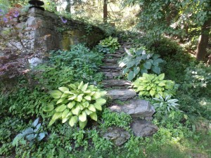 Stone steps draw visitors up to a new level