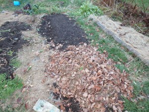 Leaves are a great mulch